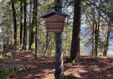 Harauer Spitze (Österreich)