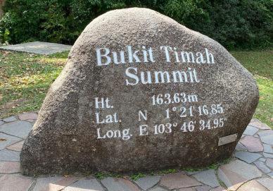 2020-02-bukit-timah-01