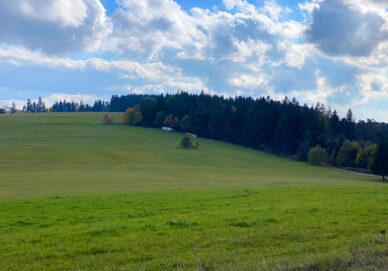 Wandbühl (Deutschland)
